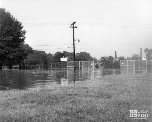 1959 - Flood (3)