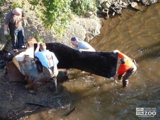 Big Creek Clean-up: Working Together
