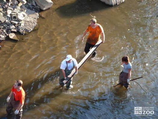 Big Creek Clean-up: It's Dirty Work