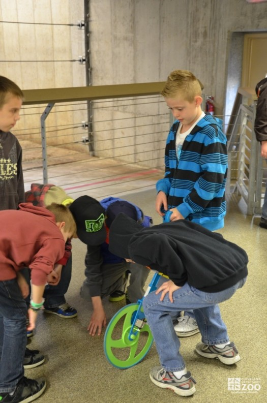 School Group Visitors Measuring in Connections to Africa Program