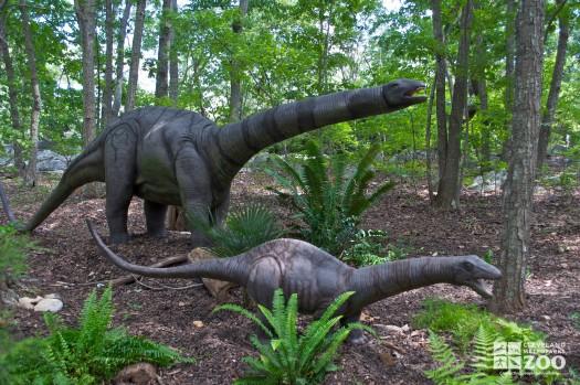 Apatosaurus and baby