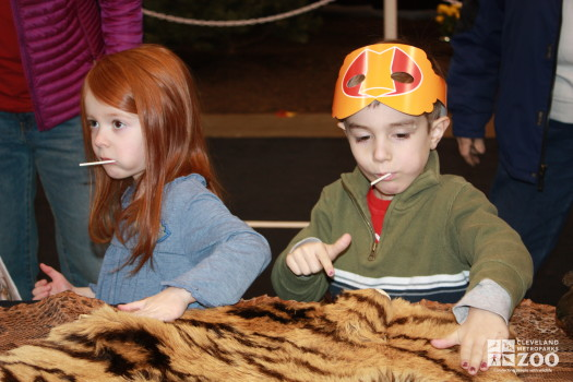 Kids touching Tiger skin- 2014 RV Show