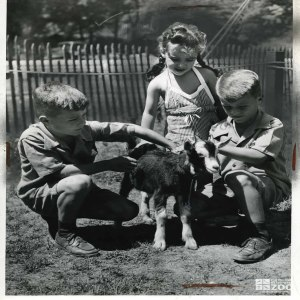1943 - Goat with Children