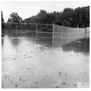 1964 - Flood