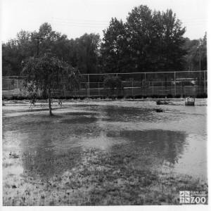 1964 - Flood (5)