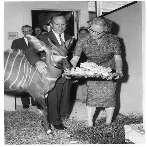 1959 - Bongo, Vernon Stouffer, and Mrs. Goss (2)