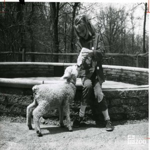 1950's - Child and Lamb