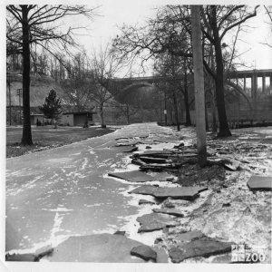 1959 - Flood Damage
