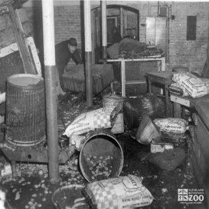 1959 - Flood Damage - Reptile Building