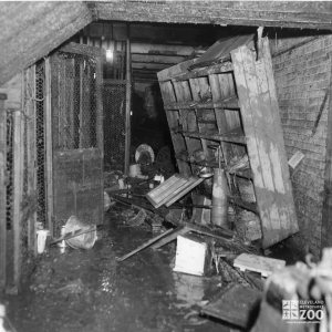 1959 - Flood Damage - Main Building (2)