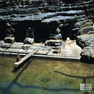 1960 - Monkey Island Moat