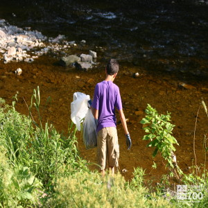2011 Summer Zoo Crew Clean-up: Into the Creek