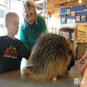 Mother's Day: Meeting a Porcupine