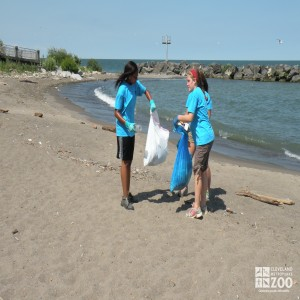 Zoo Crew Members Do Beach Cleanup
