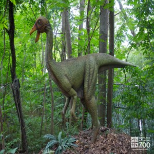 "Ornithomimus ""bird mimic"""