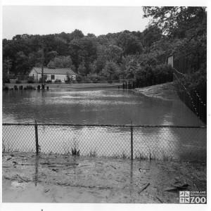 1972 - Flood 1