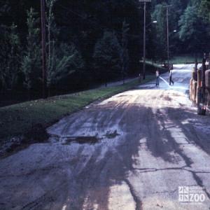 1975 - Flood 3