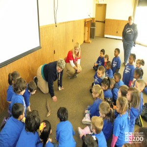 Kids Learn about a Blue-Tongued Skink during Preschool Safari
