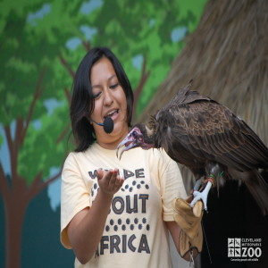 Adriana with a Hooded Vulture
