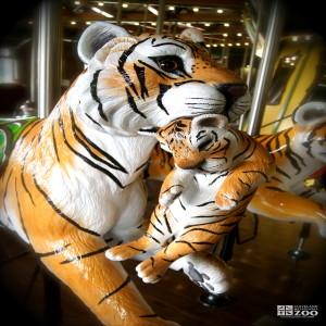 Amur Tiger and Cub - Carousel