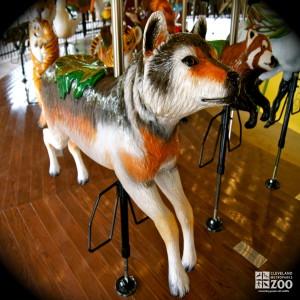 Gray Wolf - Carousel