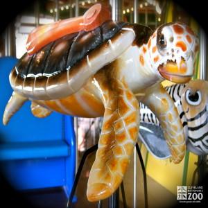 Loggerhead Sea Turtle - Carousel
