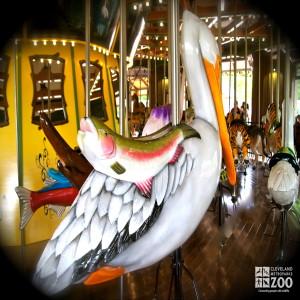 Pelican - Carousel