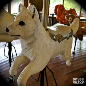 Arctic Fox - Carousel