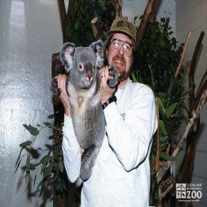 Steve Wright Holding a Koala