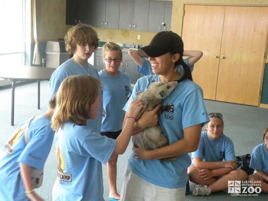 Summer Day Camp with Virginia Opossum