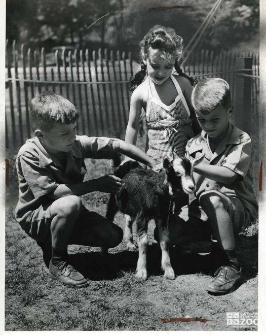 1943 - Goat with Children