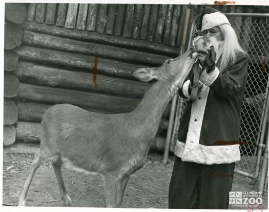 1947 - Santa Feeding Deer