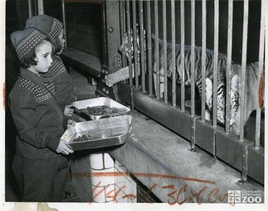 1948 - Kids Feeding Tiger Cubs