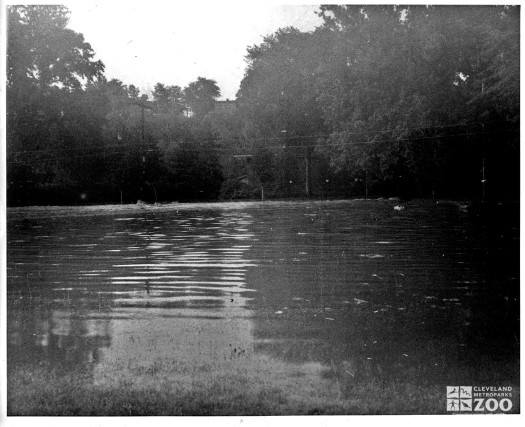1964 - Flood (9)
