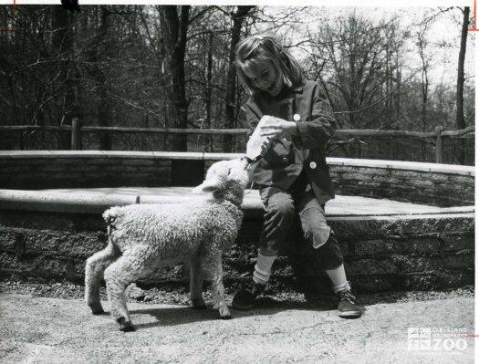 1950's - Child and Lamb