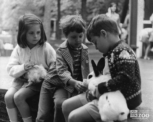 1950's - Children and Rabbits
