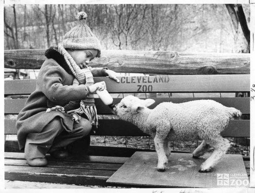 1950's - Child and Lamb (2)