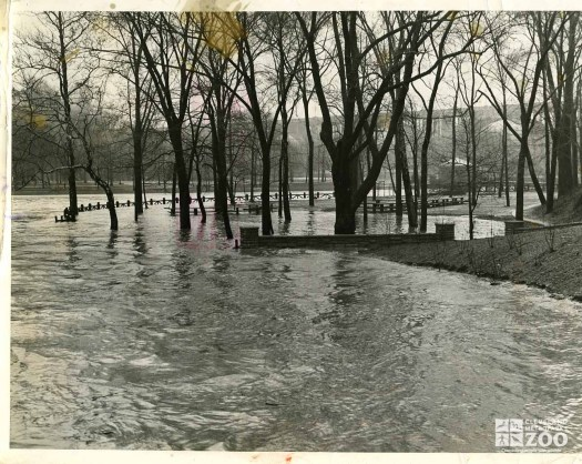 1959 - Flood