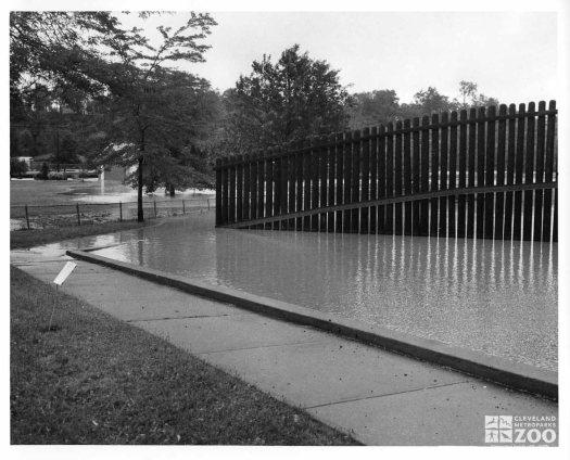 1959 - Flood (2)