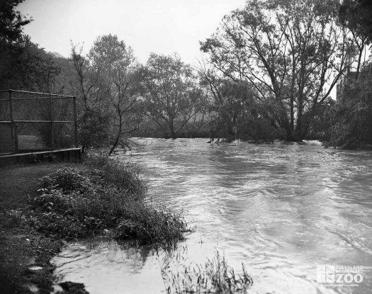 1959 - Flood Rushing Water