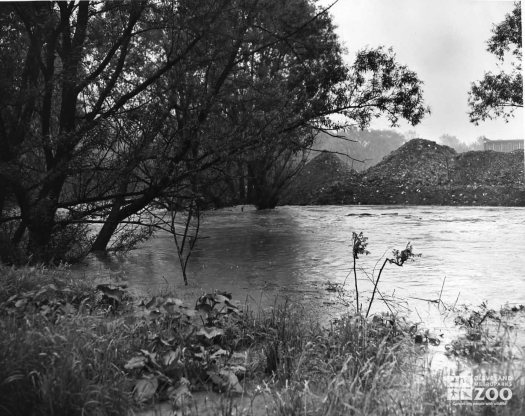 1959 - Flood Rushing Water (2)