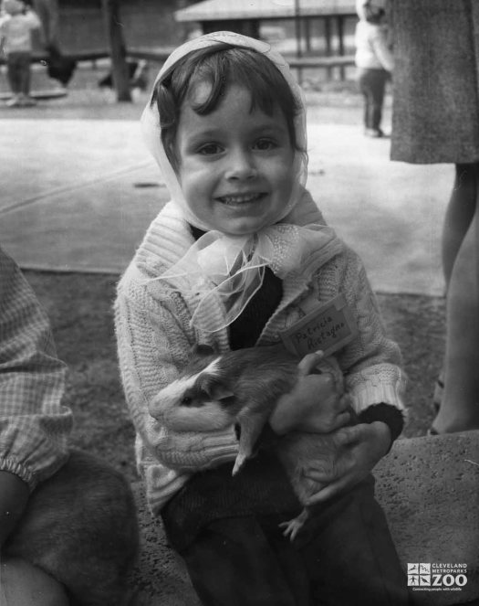 1950's - Guinea Pig with Child