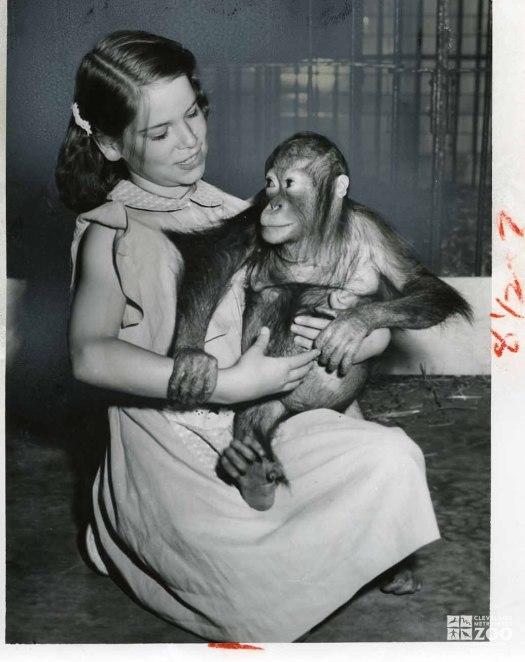 1954 - Orangutan with Visitor