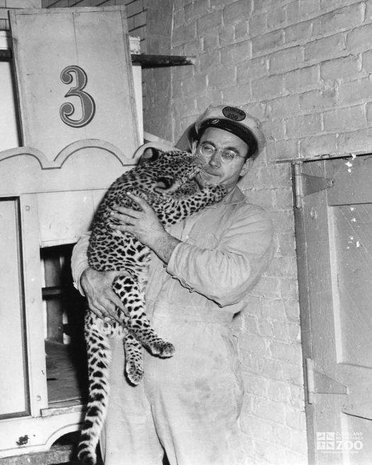 1950's Turnauckas with Leopard Cub