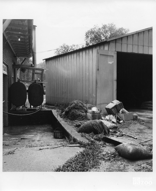 1964 - Flood Damage (3)