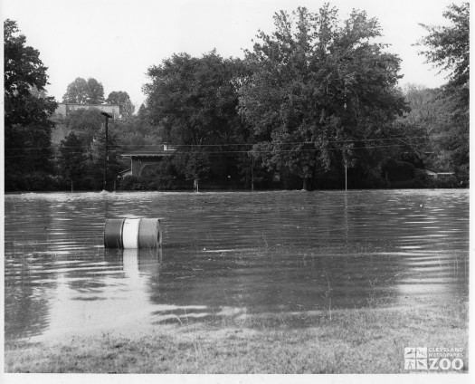 1964 - Flooding