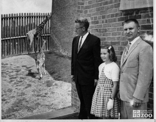1962 - Name the Giraffe