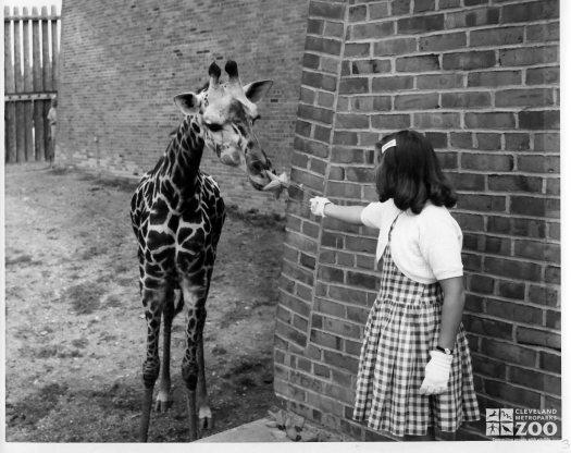 1962 - Name the Giraffe Winner with the Baby Giraffe