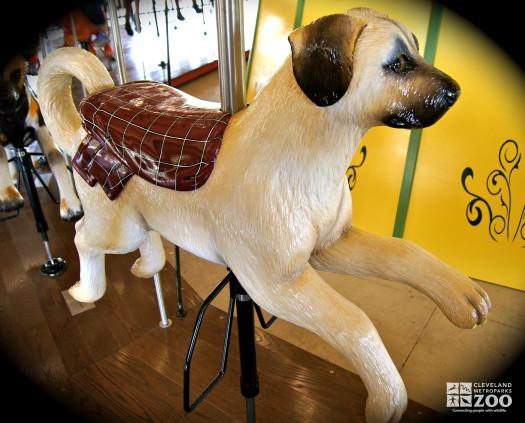 Anatolian Shepherd Puppy - Carousel
