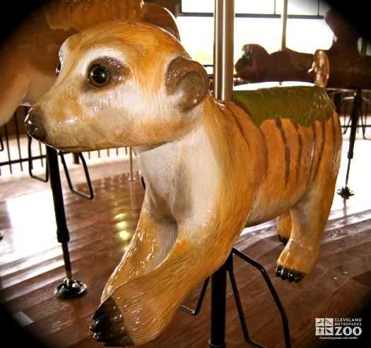 Meerkat - Carousel
